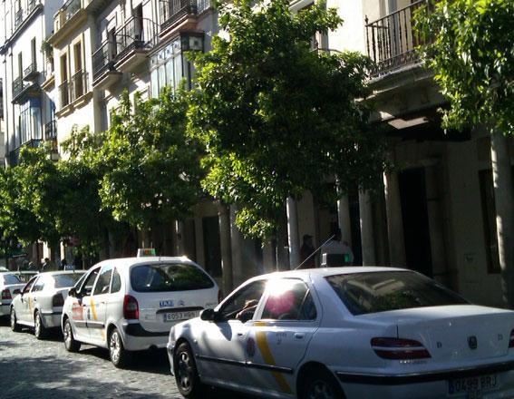 Denuncia de Foro Taxi contra Movilidad por