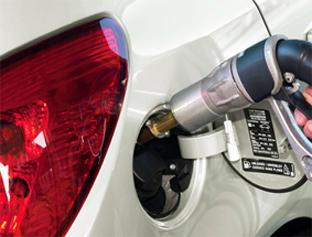 FPT pide a los fabricantes más vehículos ECO