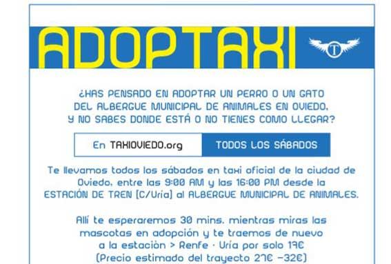 Taxista fomenta la adopción de animales en Oviedo