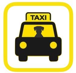 Las mascotas también viajan en taxi