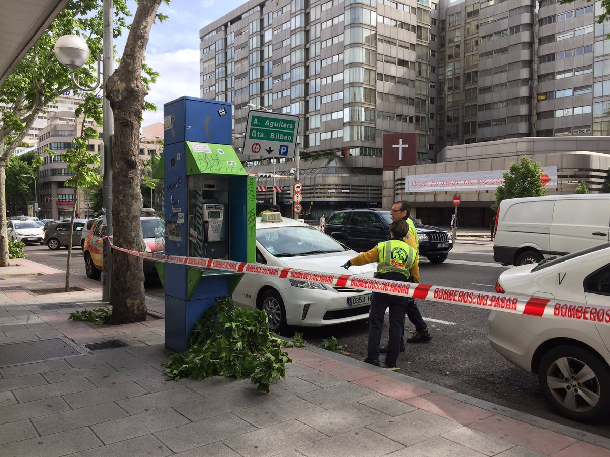Taxista herido tras caerle encima la rama de un árbol