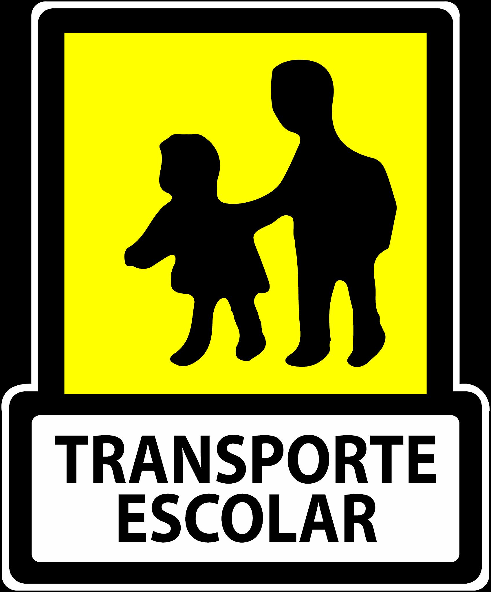 Suspendida cautelarmente la licitación del transporte escolar