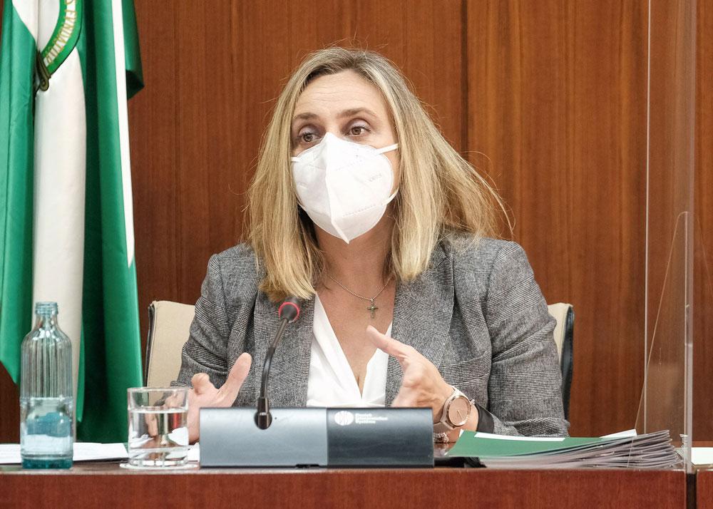 Andalucía reclama seguridad jurídica para regular las VTCs